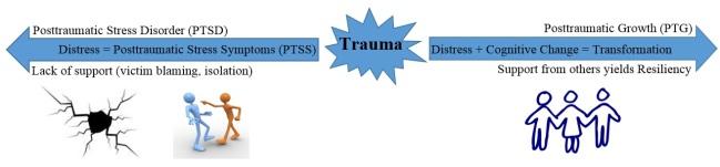PTSD vs PTG Visual Model